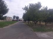 Земельный участок со зданием